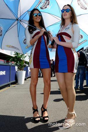 Hermosas chicas de Marc VDS Racing