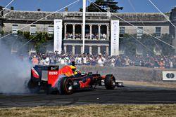 Red Bull RB8 Patrick Friesacher