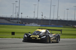 #230 FP1 Corvette Daytona Prototype, William Hubbell, Dennis Trebing, Hubbell Racing