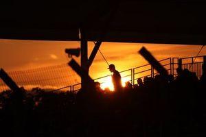 Des fans lors du coucher de soleil