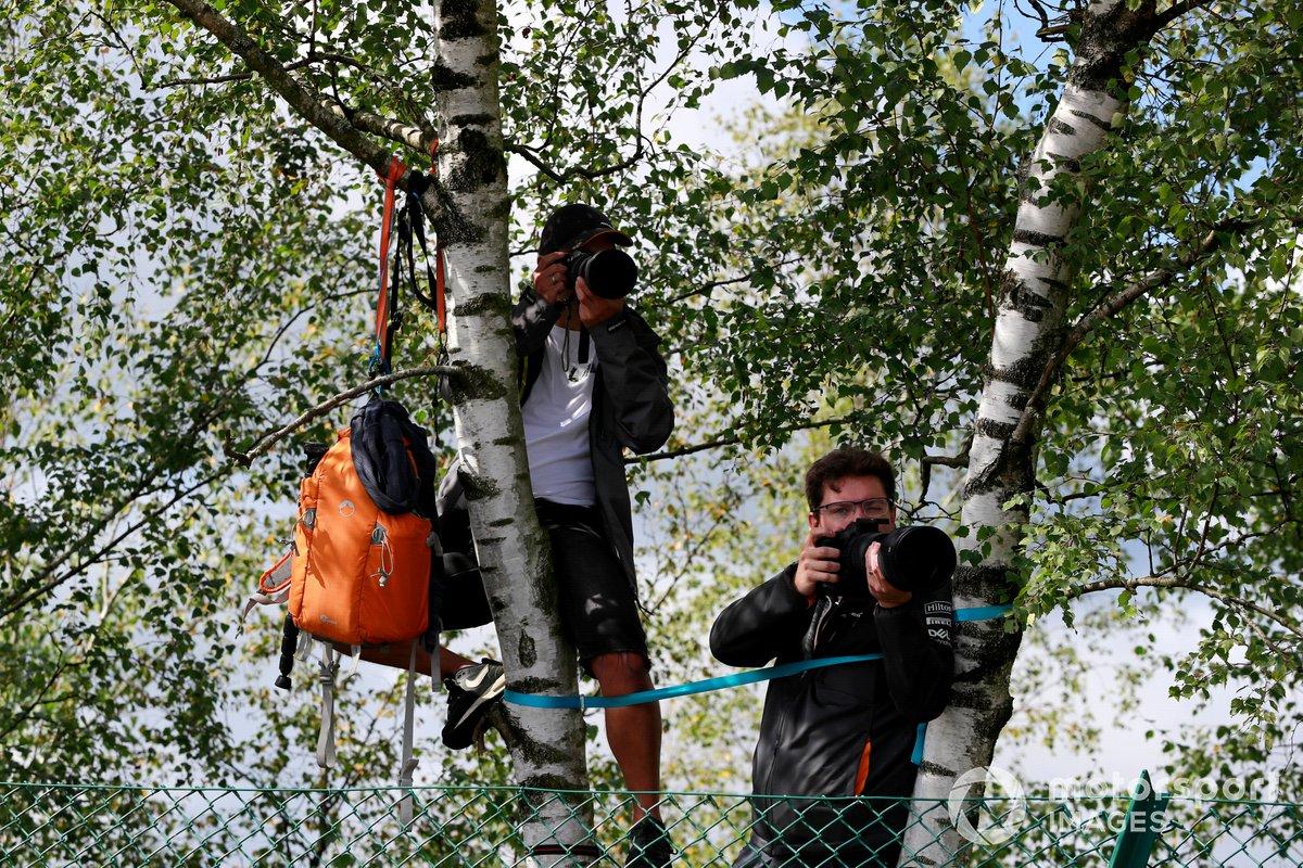 Fotógrafos en un árbol