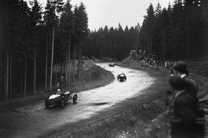 Cars pass through the forest in the rain, action