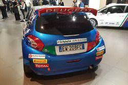 La Peugeot 208 T16 di Paolo Andreucci e Anna Andreussi