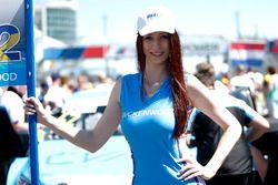 Grid girl of Thed Björk, Polestar Cyan Racing, Volvo S60 Polestar TC1