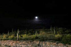 Vollmond über dem Phoenix International Raceway