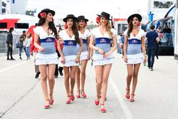 Red Bull grid kızları