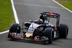 Sergio Sette Camara, Scuderia Toro Rosso STR11