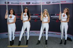 Hermosas chicas de WeatherTech
