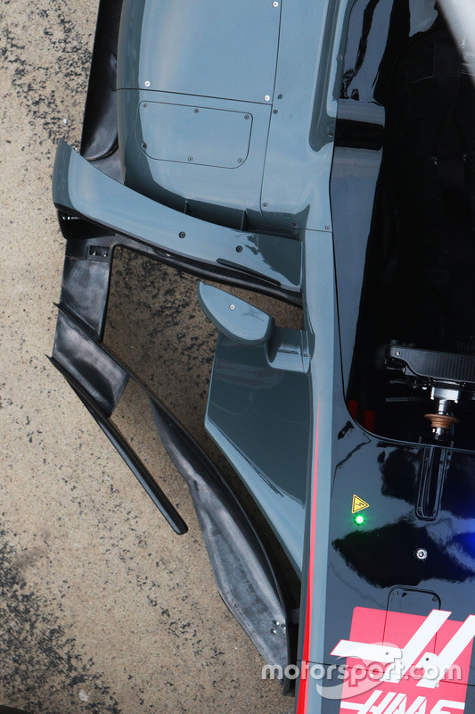 Haas VF-17: Seitenkasten