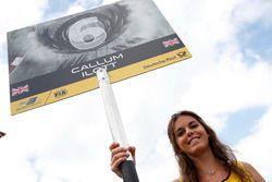 La grid girl di Callum Ilott, Van Amersfoort Racing, Dallara F312 - Mercedes-Benz