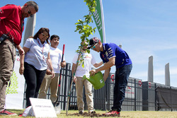 Jorge Lorenzo, Yamaha Factory Racing plante un arbre au COTA