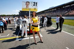 Gadis grid,of Tom Blomqvist, BMW Team RBM, BMW M4 DTM