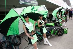 Grid girls Team Green