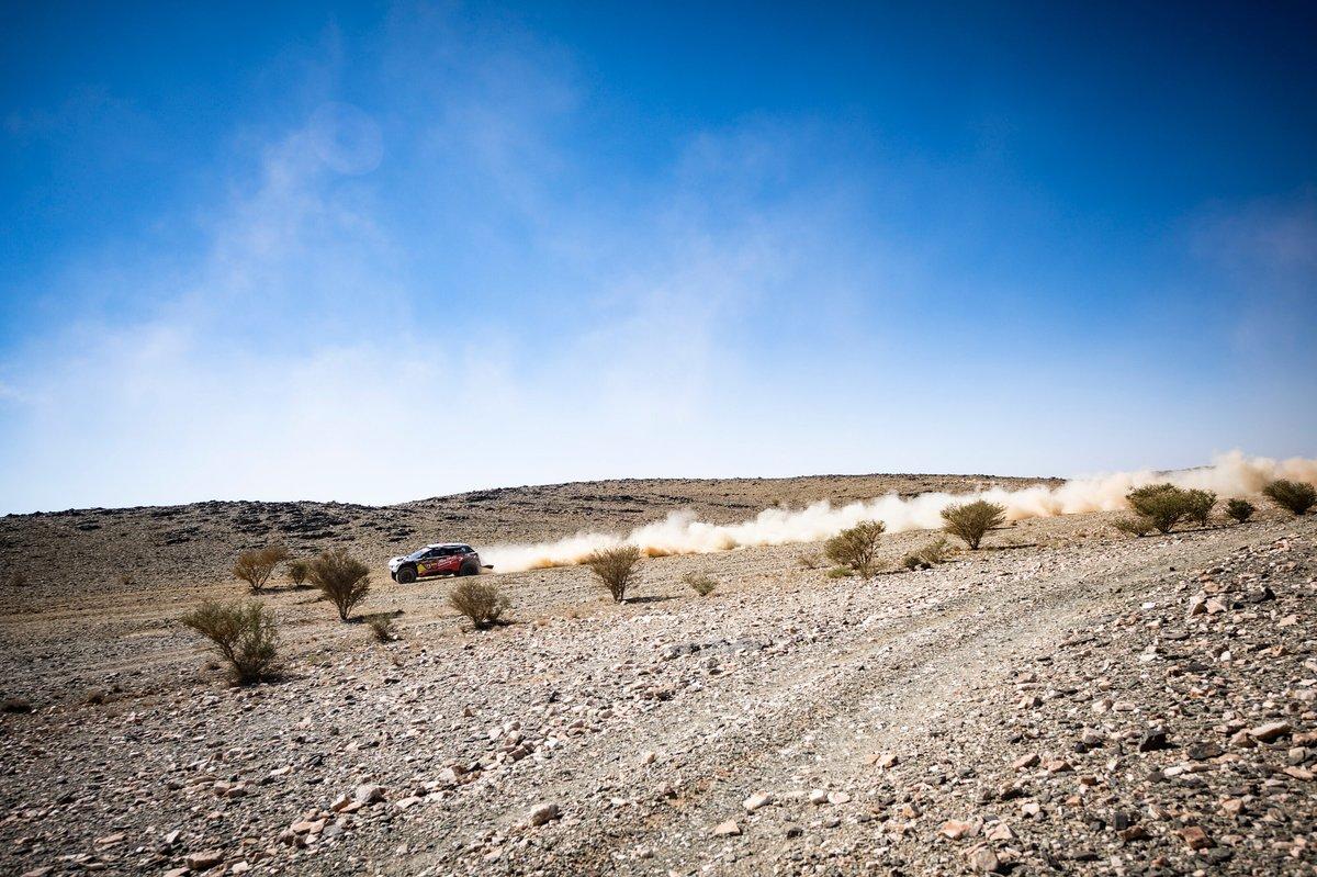 #314 Abu Dhabi Racing Peugeot: Cyril Despres, Mike Horn