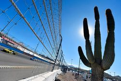 Daniel Suarez, Joe Gibbs Racing Toyota and Dale Earnhardt Jr., Hendrick Motorsports Chevrolet