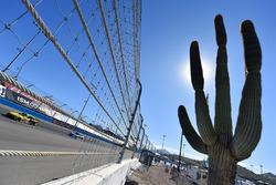 Daniel Suarez, Joe Gibbs Racing Toyota y Dale Earnhardt Jr., Hendrick Motorsports Chevrolet
