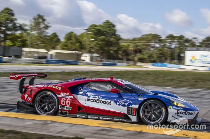 #66 Ford Performance Chip Ganassi (GTLM)