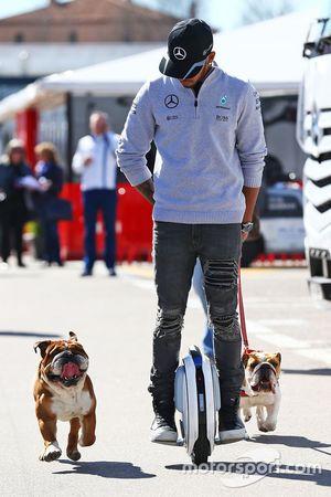 Lewis Hamilton, Mercedes AMG F1 ve köpekleri Roscoe ve Coco