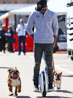 Lewis Hamilton, Mercedes AMG F1 sur un monocycle électrique dans le paddock avec ses chiens Roscoe et Coco