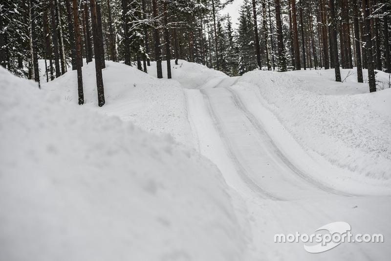 Rally di Svezia, atmosfera