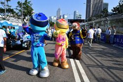 Mascots on the grid