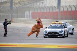 Oficiales con un mensaje para Charlie Whiting, delegado de la FIA en el auto de seguridad que involucra a un dinosaurio