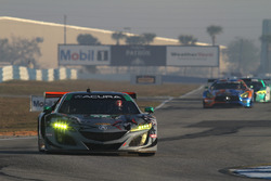 #86 Michael Shank Racing with Curb-AgajanianAcura NSX, GTD: Katherine Legge, Alvaro Parente, Trent Hindman