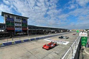 #31 Action Express Racing Cadillac DPi, DPi: Start, Mike Conway, Felipe Nasr, Pipo Derani