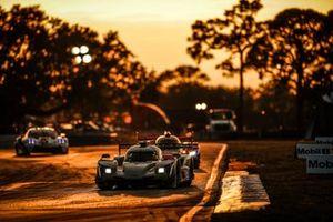 #01 : Chip Ganassi Racing Cadillac DPi , DPi : Renger van der Zande, Scott Dixon, Kevin Magnussen