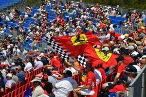 Steun voor Ferrari op de tribune