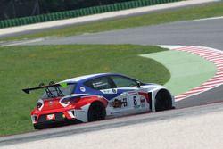 Fabio Fabiani, BF Racing, Seat Leon Racer-TCR