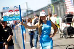 Chica de la parrilla de Daniel Nagy, Honda Team Zengo, Honday Civic WTCC