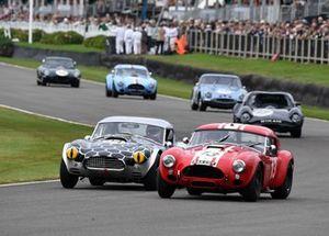 Royal Automobile Club TT Celebration Martin Brundle Bobby Verdon-Roe Cobra Shaun Lynn Andy Priaulx