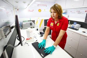 Shell team member