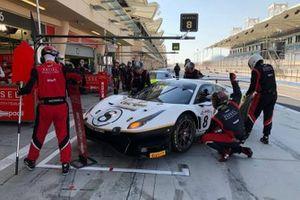 #8 Kessel Racing, Ferrari 488 GT3: Alessandro Cutrera, Leonardo Maria Del Vecchio, Marco Frezza, Nicola Cadei