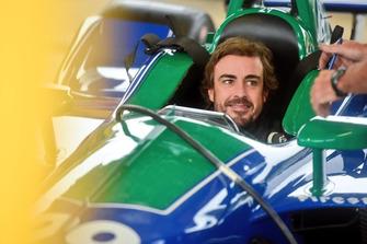 Fernando Alonso, Andretti Autosport