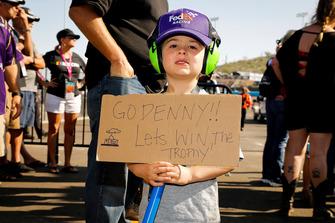 Denny Hamlin, Joe Gibbs Racing, Toyota Camry FedEx Ground fan