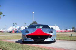 Collection of Ferrari's