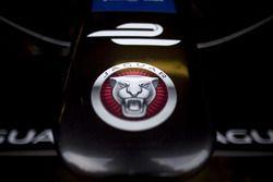musetto della Jaguar Racing