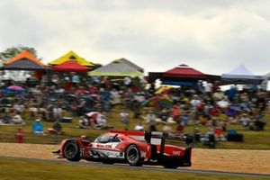 #31 Action Express Racing Cadillac DPi: Felipe Nasr, Pipo Derani, Eric Curran