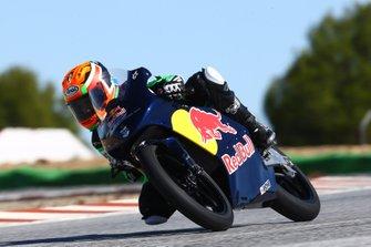 Collin Veijer, Red Bull Rookies Cup