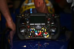 Marcus Ericsson, Sauber C35 - volante
