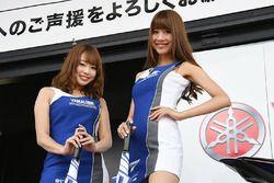 Grid girls Yamaha
