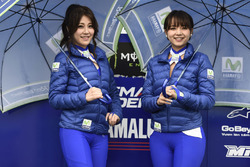 MotoGP 2017 Motogp-japanese-gp-2017-girls