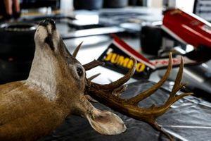 Rinus VeeKay, Ed Carpenter Racing Chevrolet garage. Only in Texas