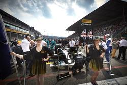 Грід-гьолз Льюіса Хемілтона, Mercedes AMG F1