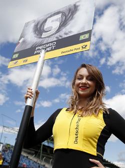 Gridgirl für Pedro Piquet, Van Amersfoort Racing Dallara F317 - Mercedes-Benz