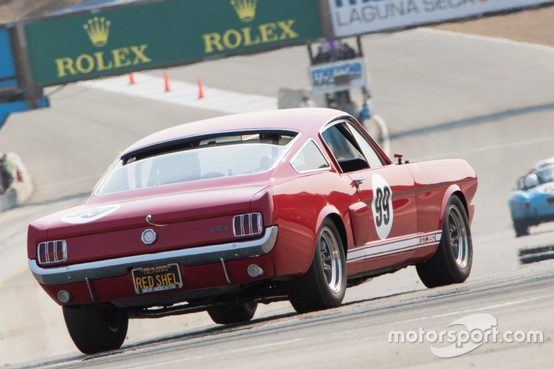 1966 Shelby GT 350: Brad Oldenbrook