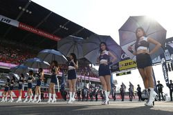 Lovely Chang grid girls