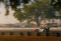 Патрик Лонг, Кристина Нильсен, Роберт Ренауэр, Матье Жамине, Wright Motorsports, Porsche 911 GT3 R (